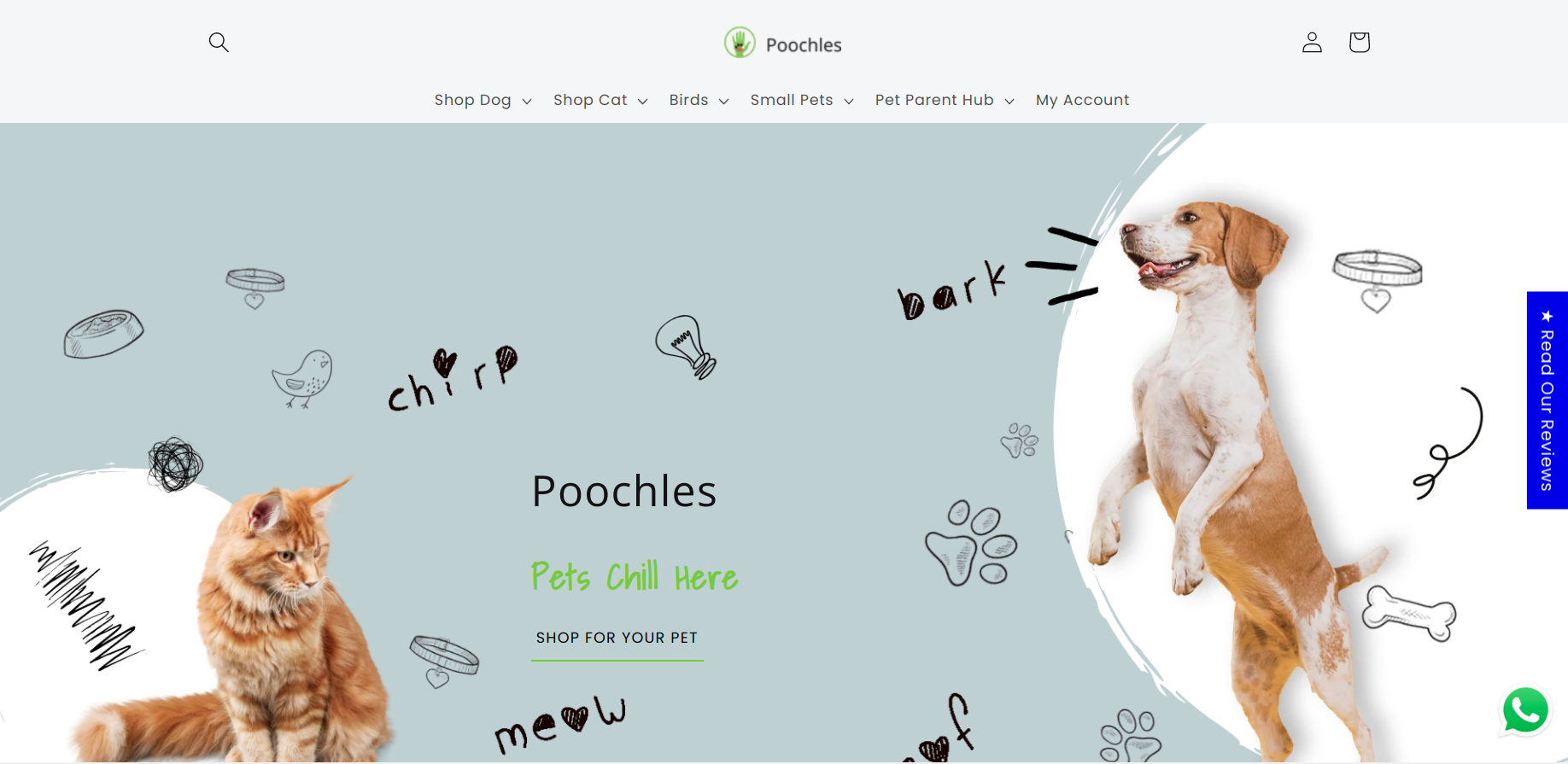 poochles-shopify-dawn