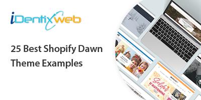 shopify-dawn-theme-examples